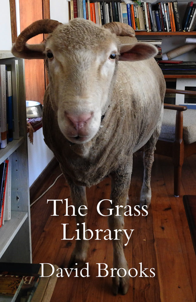 grass-library-cover
